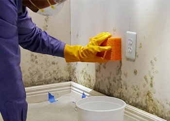 How To Clean Mold Off Walls In Bathroom