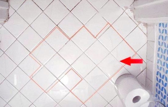 Red Mold Bathroom Overview and Tips to Remove It
