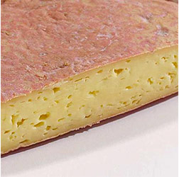 Red Mold on Cheese