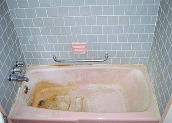 How to Prevent Pink Mold in Bathroom or Shower