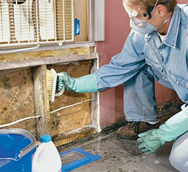Remove Existing Mould